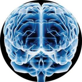 Cérebro, a usina de energias que desconhecemos totalmente.