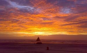 Quando o Sol vem saindo no horizonte a Vida se ilumina e se agita e a gente se sente renovado.