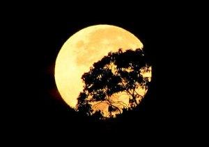 A Lua Cheia, por cima do morro do Olinda, é simplesmente Linda!
