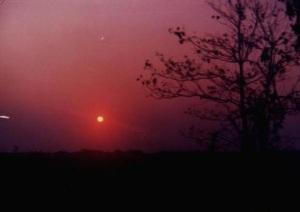 O pôr do sol na mata é sempre mágico.