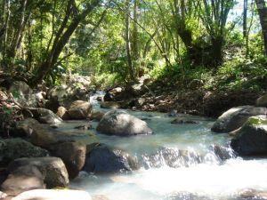 Um riacho era sempre o local preferido de Issa para ensinar a Primus.