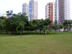 Goiânia tem belos parques e, às vezes, eu vou até eles e fico zanzando por lá.