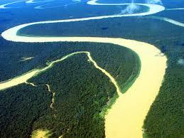 """""""Olha que mar, que rios, que florestas/A Natureza aqui, perpetuamente em festa/ É um seio de mãe a transbordar carinho"""""""