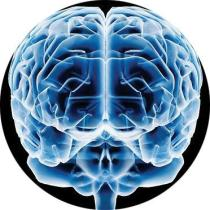 A Mente Humana é pura energia. Mas onde está esta energia e o que é ela, afinal?