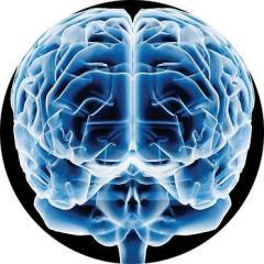 A Mente Humana é pura energia. Mesmo a resultante da Aprendizagem natural ou escolástica.