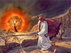 Assim dizem que Deus apareceu a Moisés: como um fogo que não queimava a sarça em que se manifestava.