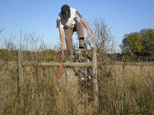 Pular a cerca é fácil. O difícil é conviver com o resultado disto...