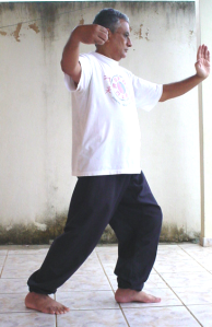 A Yoga de pé, do Tai-chi-tchuen é maravilhosa para o equilíbrio mente-corpo.