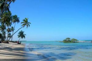 Minha terra tem palmeiras onde canta o sabiá...