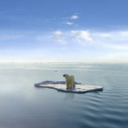 Eis um dos resultados de nossa ação nefasta sobre este planeta. Que tristeza...
