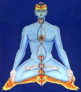 Quando o Poder da Concentração alinha os sete chakras sagrados, dizem os yogues que se pode levitar à vontade.