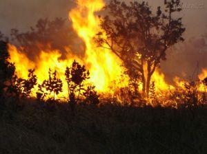 Diante de nosso futuro imediato há uma fogueira maior que esta à nossa espera...