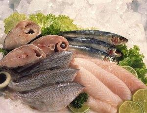 Cadáveres de peixe não despertam piedade, mas fazem salivar a alguns.
