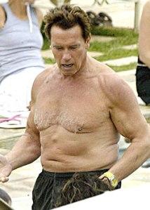 Schwarzenegger despencado, tadinho...