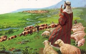 O pastor não é o senhor, mas o escravo de seu rebanho.