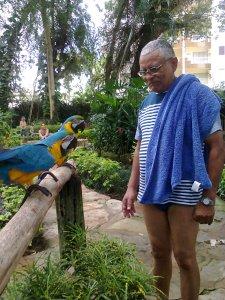Atualmente eu prefiro as aves e os animais irracionais, aos racionais...