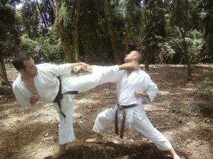 Combate de karatecas.