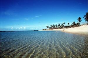 Uma ilha estranha substituiu a da milionária. Tudo era diferente ali. O que acontecia?