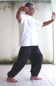 Pratiquei tai-chi-tcuen com o monge Shao-lin, Mestre Wu-chao Ksiang, a mais bela e suave arte marcial que conheci.