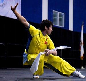 Também pratiquei a Arte Wushu de Tai-Chi-Chuen com um Monge Shao-lin e a disciplina dele era suave, embora rígida. Ele ensinava Arte Marcial verdadeira, não Arte de Combate de Competição.