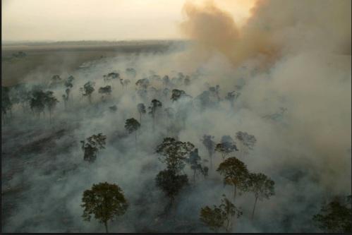DESMATAMENTO NA AMAZÔNIA - IMAZON FOTO 5